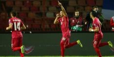 Groep D: Tadic bezorgt Servië winst, Ierland en Wales gelijk