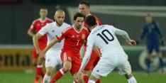 Groep D: Wales en Ierland doen goede zaken, Servië onderuit