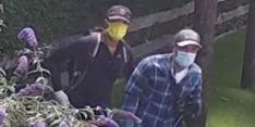 Inbrekers slaan tijdens oefenwedstrijd toe bij Vormer