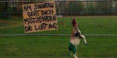 Fans Braunschweig bezorgen aartsrivaal dood schaap