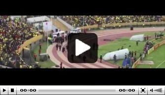 Bizarre beelden; politie jaagt op Ecuador-spits